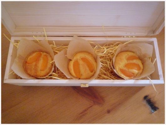 Little Apricot Cakes